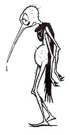 Zé Mosquito Partituna Cartuna